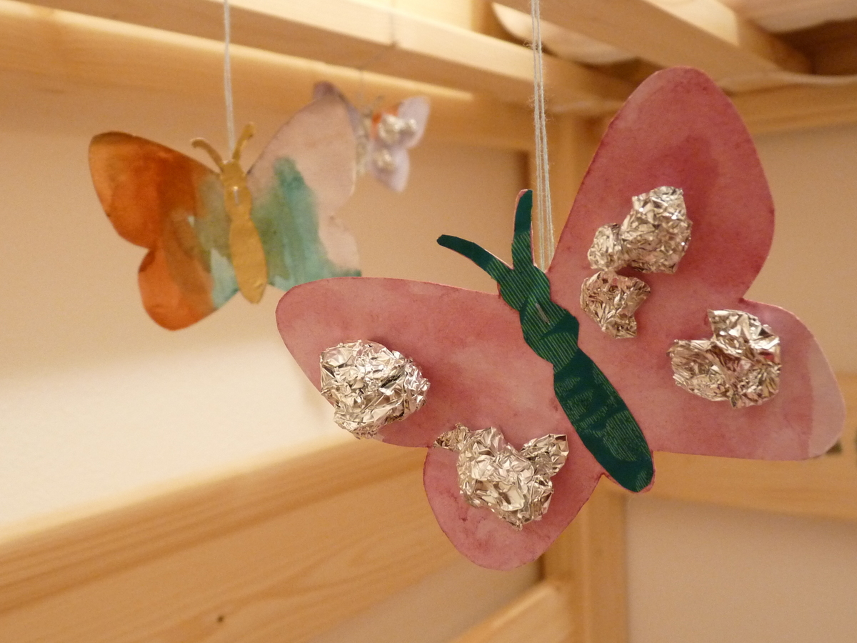 motýlci 0